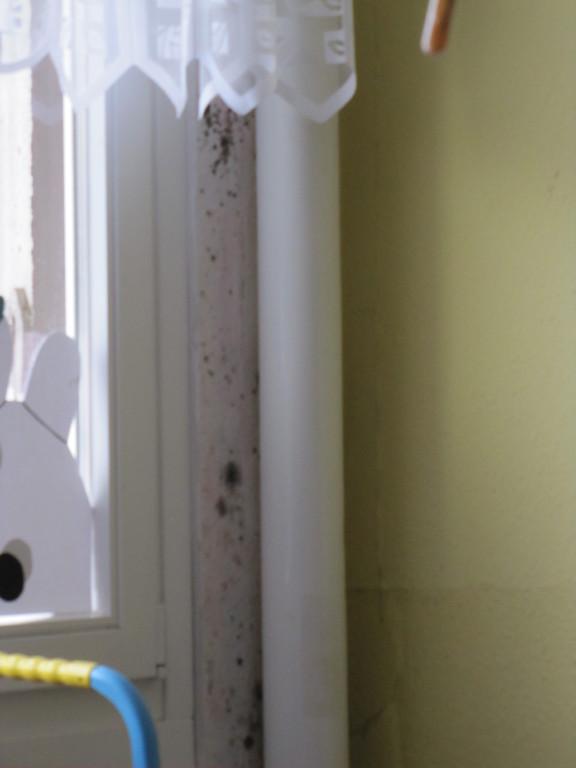 Schimmelpilze im Zimmer an der Außenwand hinter dem Rohr
