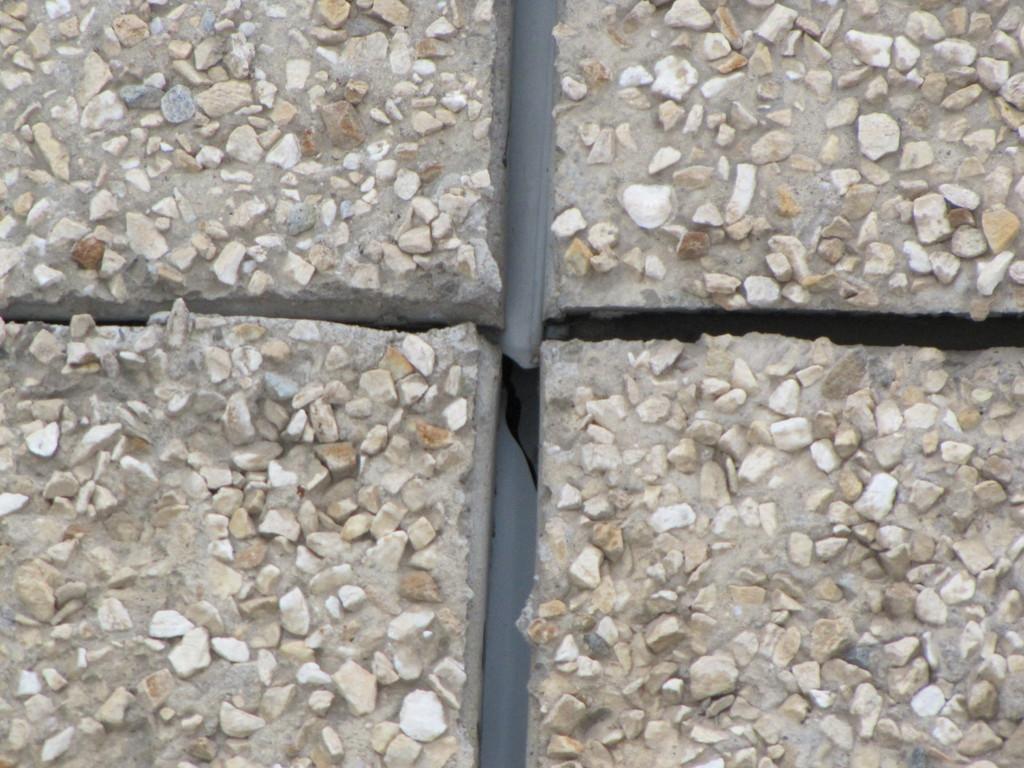 Schimmelpilze zwischen den Steinfließen